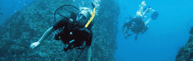 潜水在 帕岸岛 Koh Phangan