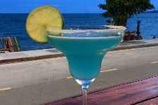 """""""停止营业"""" Gumbo House Cajun Seafood Rest & Bar"""
